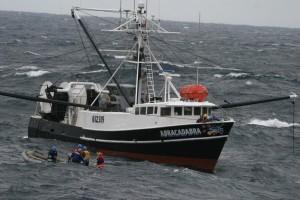 2011_06_pesca_ilegal